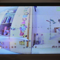 Redpawz-EV800-Pro-live-view