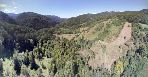 Litchi app - My first panorama taken with Phantom 3