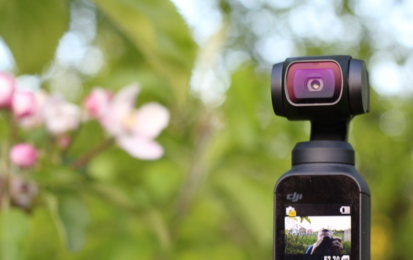 DJI Osmo Pocket Review: Image quality