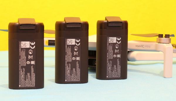 DJI Mavic Mini Arya review: Battery life